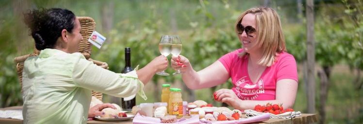 Picknicken in de Westhoek